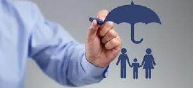 Для чего нужно оформлять накопительное страхование жизни