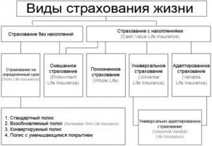 страхования жизни на случай смерти в России